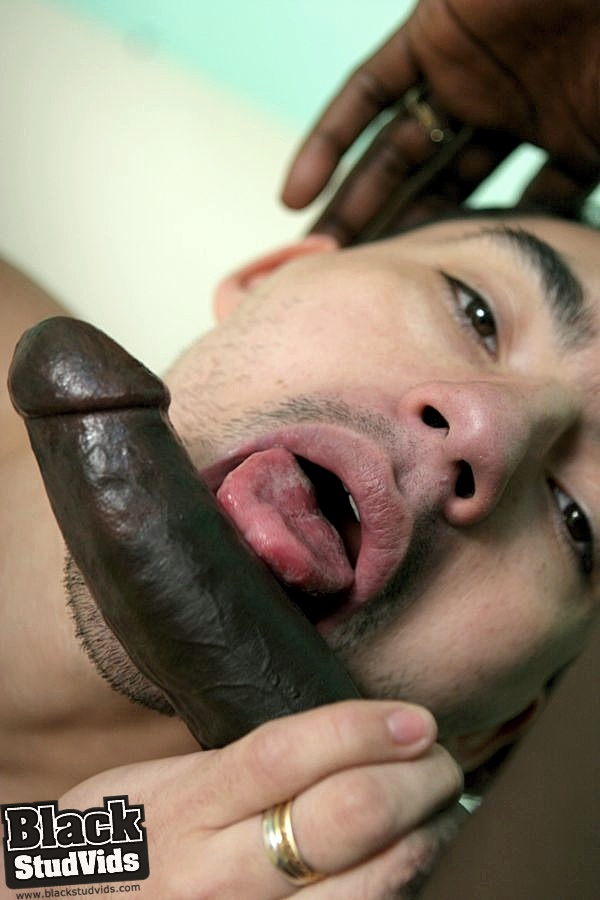 image Black gay sucking hard cock movie so we got